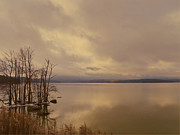Pamela Phelps - Ashokan Reservoir Morning Light