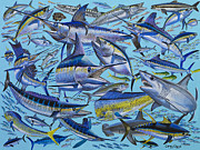 Carey Chen - Atlantic Gamefish