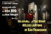Wingsdomain Art and Photography - Attack of The Giant Killer Ladybug of...