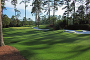 Augusta Golf Photos Art - Augusta National 10 Camellia Masters Photo 3 by Phil Reich