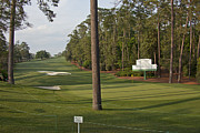 Augusta Golf Photos Art - Augusta National 10 Camellia Masters Photo 4 by Phil Reich