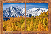 Fall Photos Posters - Autumn Aspen Tree Forest Barn Wood Picture Window Frame View Poster by James Bo Insogna