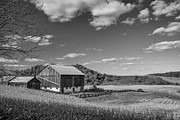 Cornfield Prints - Autumn Barn monochrome Print by Steve Harrington