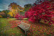Lawn Prints - Autumn in the Park Print by Adrian Evans