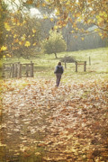 Elaine Teague Prints - Autumn in the Valley Print by Elaine Teague