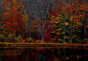 Poconos Art - Autumn Lake by James Chesnick
