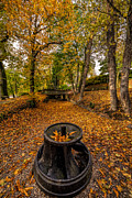 Border Digital Art Metal Prints - Autumn Park Metal Print by Adrian Evans