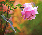 La Vie En Rose Prints - Autumn Rose Print by Theresa Tahara