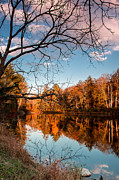 Stokes State Forest Prints - Autumns Evening Light Print by Sara Hudock