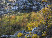 Wild And Scenic Prints - Autumns Reflection Print by Loree Johnson