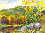 Water Reflections Drawings - Autumns Showpiece by Carol Wisniewski