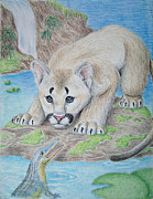 Jeanette Kabat - Baby Cougar and Alligator