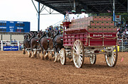Handcrafted Art - Back View Anheuser Busch Clydesdales Pulling a Beer Wagon USA by Sally Rockefeller