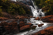 Jenny Rainbow - Bakers Fall I. Horton Plains National...