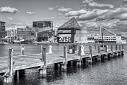 Patapsco River Photos - Baltimore Inner Harbor Skyline VI by Clarence Holmes