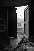 Horse Images Prints - Barn Door - View from within Print by Gary Heller