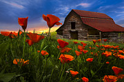 Debra and Dave Vanderlaan - Barn in Poppies
