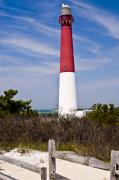 Lighthouses Framed Prints - Barnegat Lighthouse Framed Print by Anthony Sacco