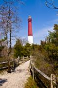 Barnegat Lighthouse Framed Prints - Barnegat Lighthouse II Framed Print by Anthony Sacco
