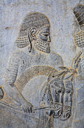 Bas-relief Prints - Bas reliefs at Persepolis in Iran Print by Robert Preston