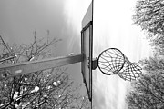 Basket Photo Originals - Basket by Maurizio Grandi