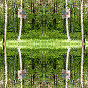Basket Ball Digital Art Prints - Basketball Forest Court Reflection 1 Print by Yevgeni Kacnelson