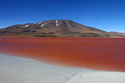 Bolivia - Beach at Laguna Colorada by James Brunker