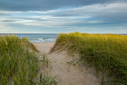 Atlantic Beaches Prints - Beach Print by Bill  Wakeley