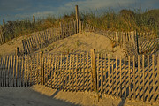 Beach Fence Prints - Beach Fence Print by Susan Candelario