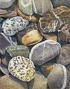 Birdseye Painting Posters - Beach Rocks 4 Poster by Nick Payne