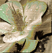 Spring Scenes Mixed Media - Beauty VI by Yanni Theodorou