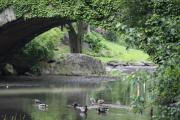 Christiane Schulze Prints - Below The Bridge - Central Park NYC Print by Christiane Schulze