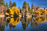 Metro Park Metal Prints - Bend Oregon Reflections Metal Print by Adam Jewell