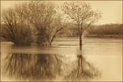 Brown Toned Art Framed Prints - Beside Still Waters-Sepia Framed Print by Priscilla Burgers