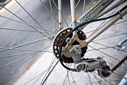 Cycling Art Metal Prints - Bicycle Wheel Metal Print by Tanya Harrison