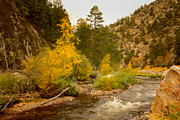 Larimer County Art - Big Thompson River 10 by Jon Burch Photography