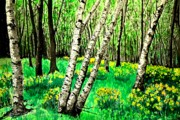 Diane Merkle Posters - Birch Trees in Spring Poster by Diane Merkle