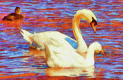 Swans Digital Art - Birds on the Lake by Jeff Kolker
