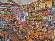 Constantine Gregory - Birdwatchers General Store