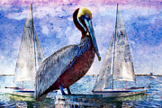 Waterway Birds Prints - Blue Boy Print by Debra and Dave Vanderlaan