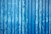 Stripe.paint Photo Prints - Blue fence Print by Tom Gowanlock