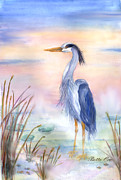 Waterfowl Paintings - Blue Heron Sunrise by Bette Orr