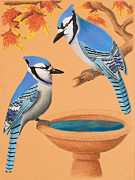 Jeanette Kabat - Blue Jays in Fall