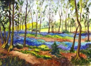 Great Britain Drawings - Bluebell Woods by Carol Wisniewski