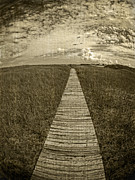 Edward Fielding - Boardwalk Through the Dunes
