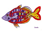 Lori Ziemba Framed Prints - Bosemans Rainbowfish Framed Print by Lori Ziemba