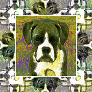 Boxer Digital Art Metal Prints - Boxer Dog 20130126 Metal Print by Wingsdomain Art and Photography