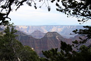 Walhalla Framed Prints - Bright Angel Point Trail View Framed Print by Christiane Schulze