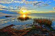 Dan Carmichael - Brilliant Pamlico Sound Sunset on Outer...