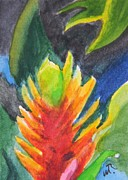 Bromeliad Originals - Bromeliad Vriesea by Warren Thompson